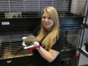 Nicole Kopcsa, Tierpflege