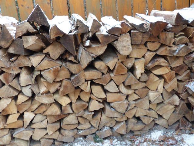 Holzstapel bieten vielen Wildtieren Unterschlupf.